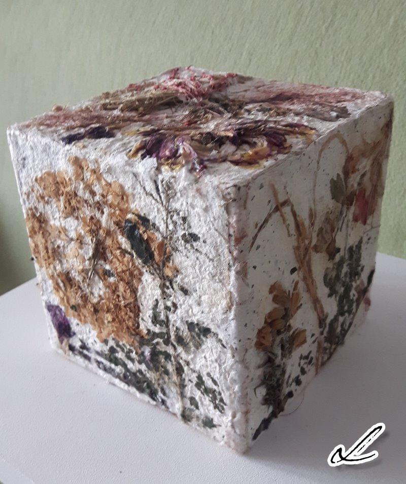 Cube 2 Ute Licht