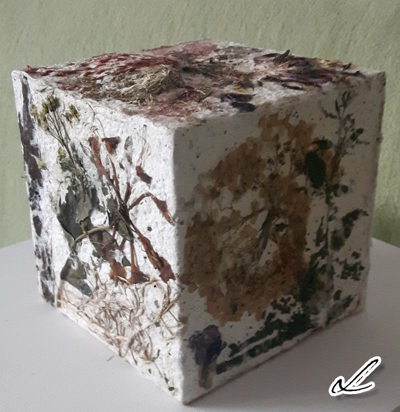 Cube 3 Ute Licht