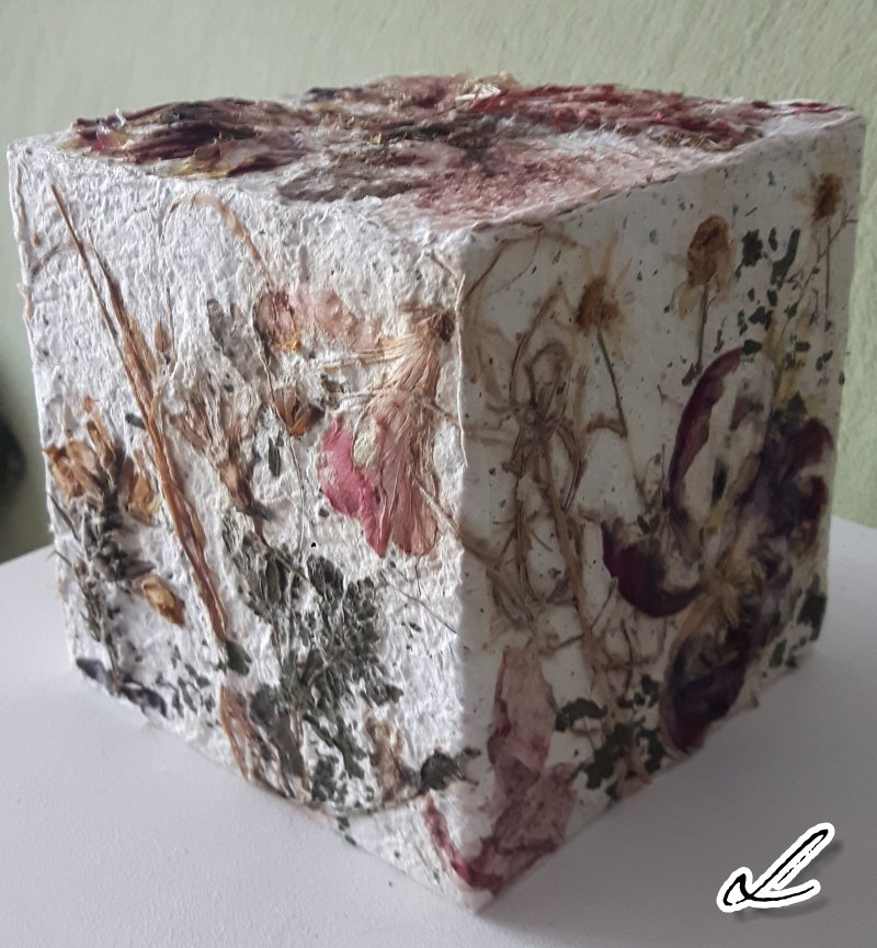 Cube 4 Ute Licht